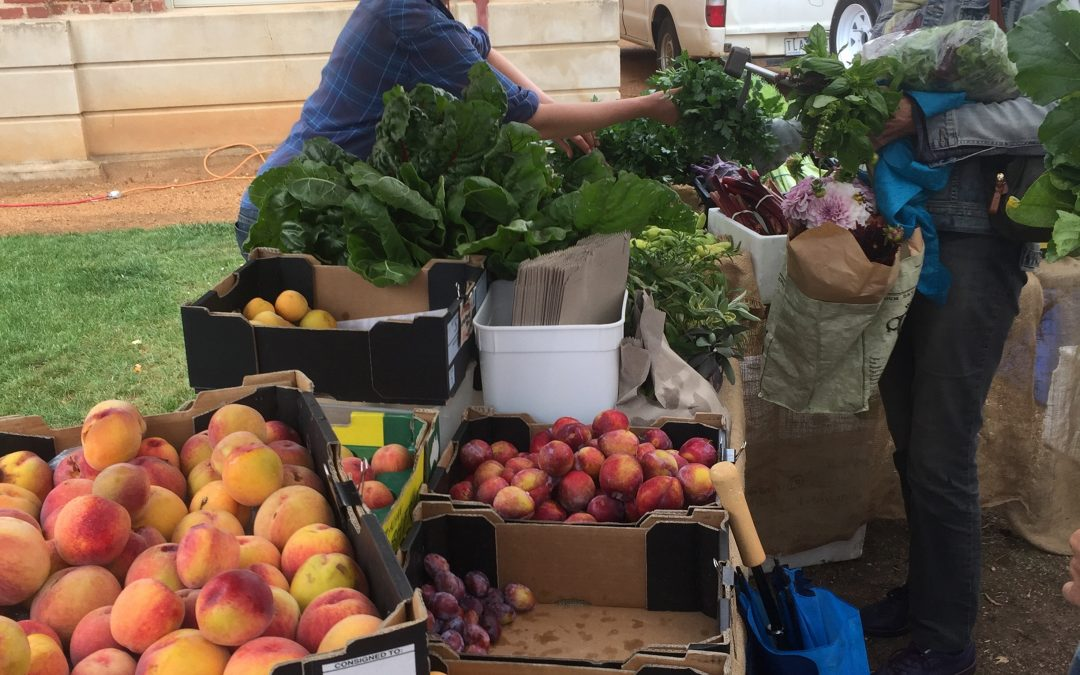 Upcoming Farmers Markets